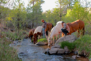 Hondoo Rivers & Trails - kids love the adventure