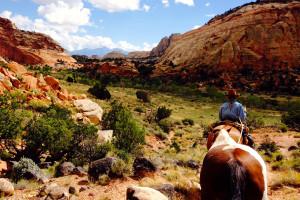 Hondoo Horseback Tours