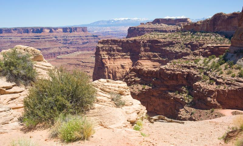 View from the Shafer Trail over Canyonlands National Park