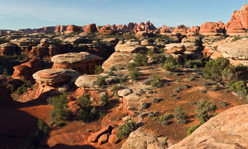 Overlooking the Needles from Elephant Hill in Canyonlands National Park