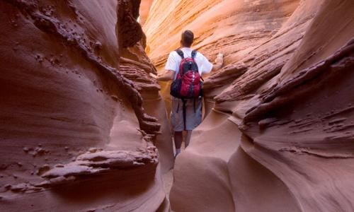 Capitol Reef Hiking Trails National Park Hikes Alltrips