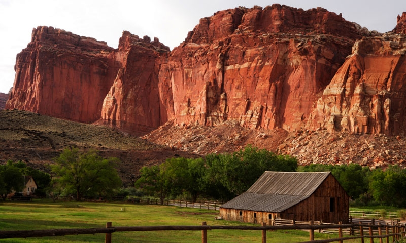 Fruita Orchards Capitol Reef National Park Alltrips